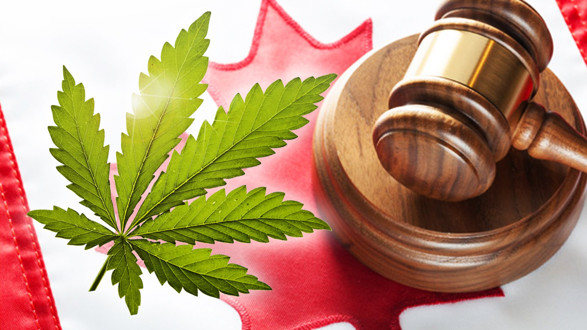Wondering How Canadian Cannabis Legalization Will Impact The Work Place?