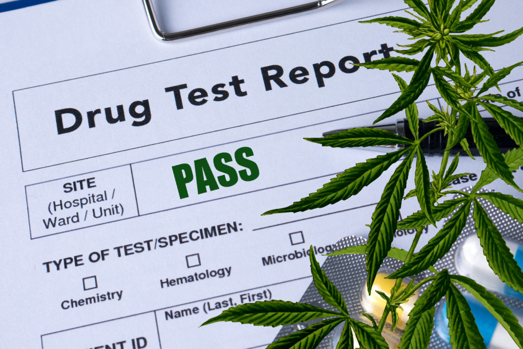 The Risk Assessment of Cannabis Legalization In Canada